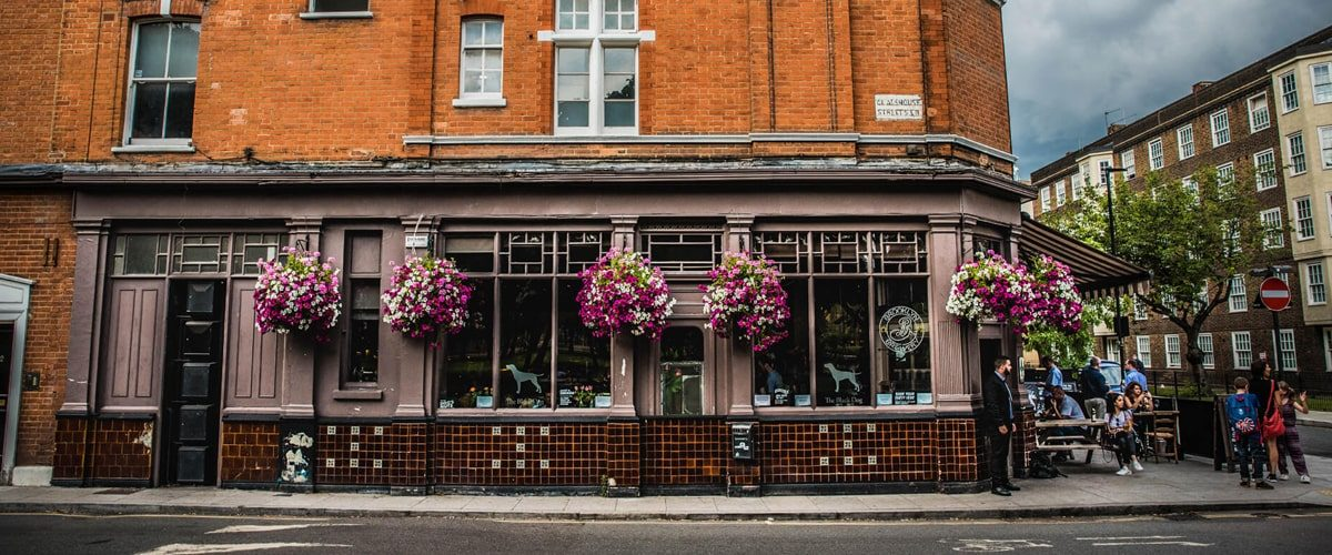 The Black Dog pub flower baskets outside